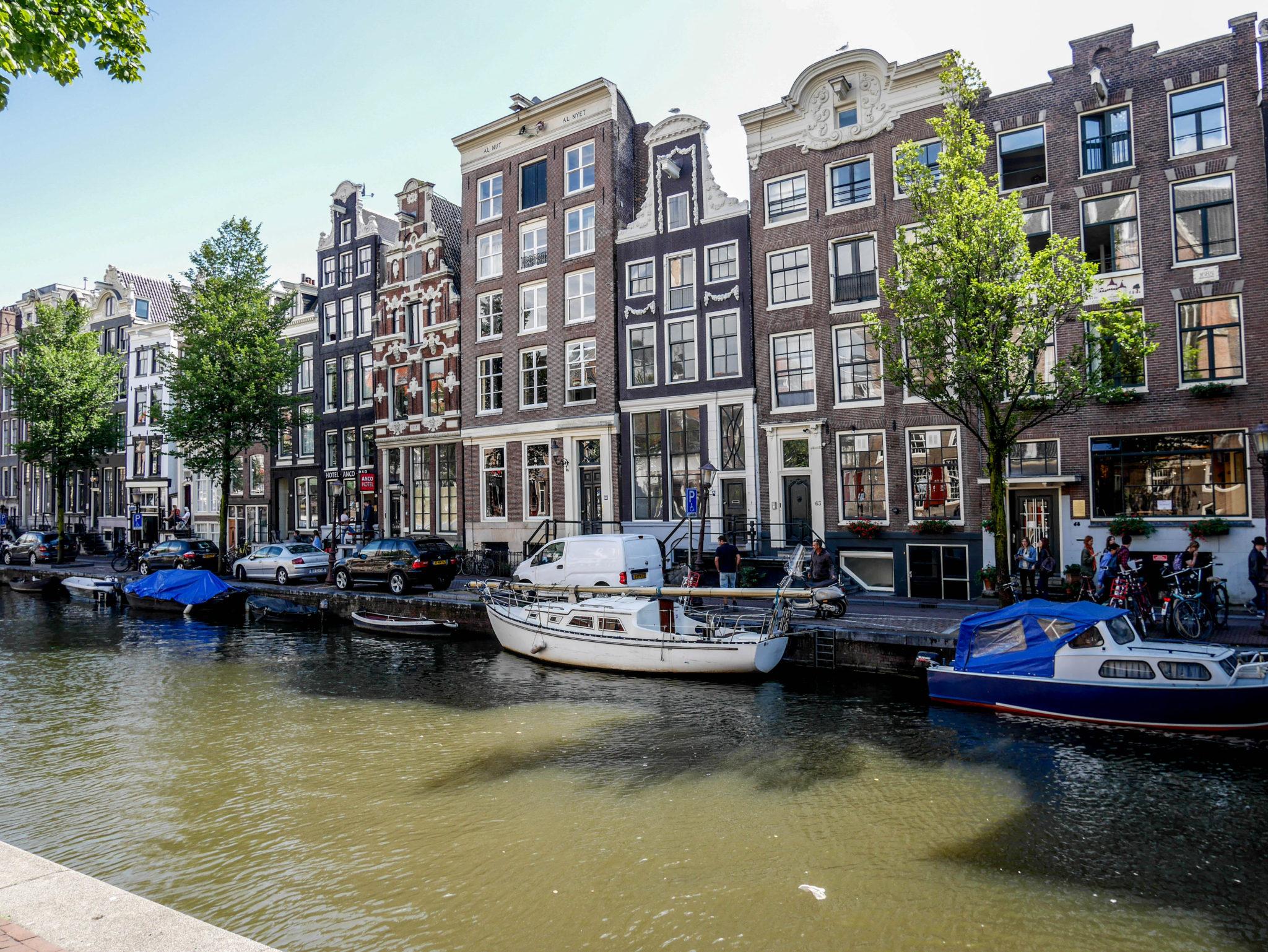 la-petite-planete-de-zoey-amsterdam-100