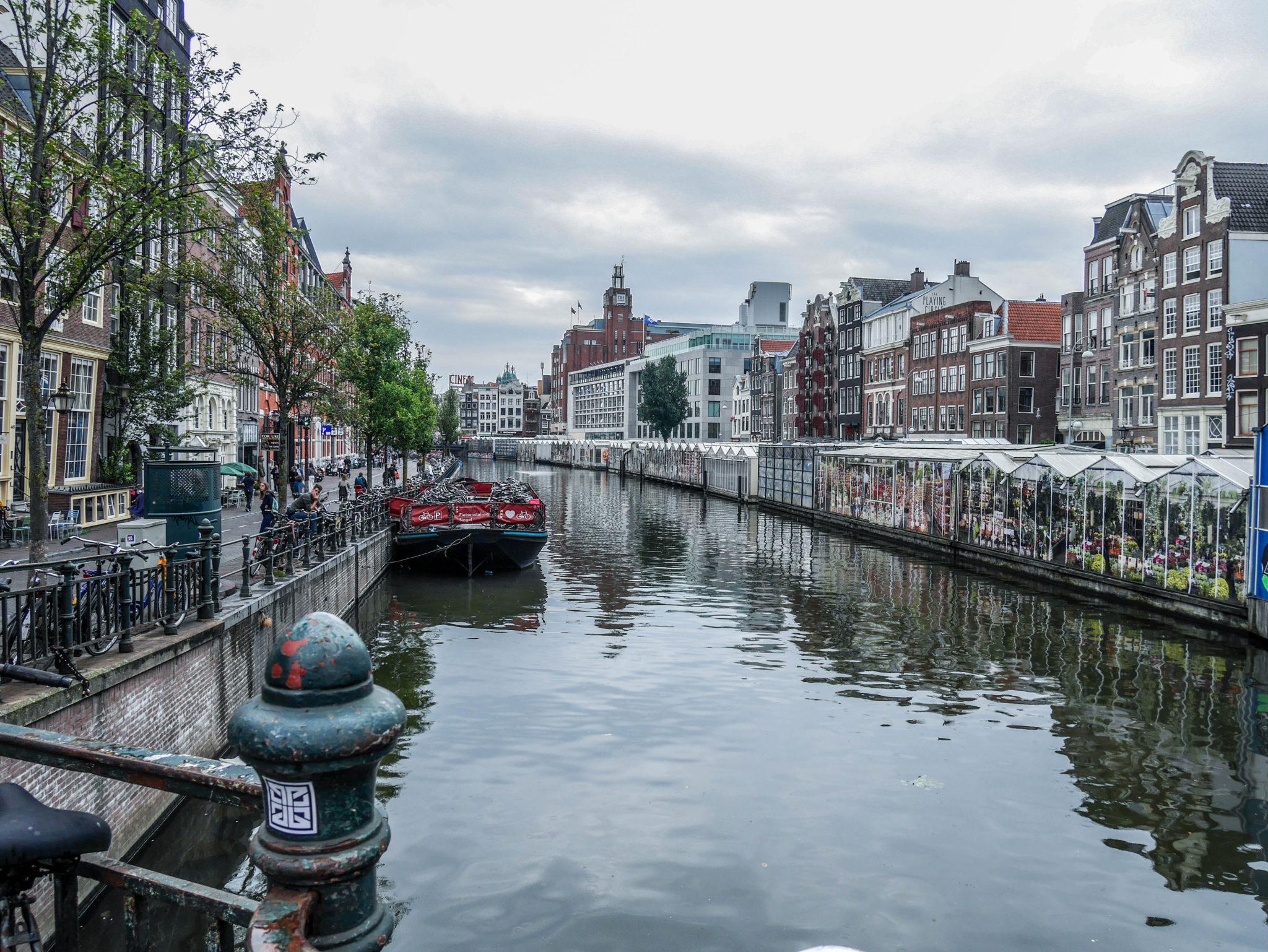 la-petite-planete-de-zoey-amsterdam-40